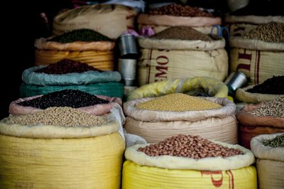 Legumes are a good source of protein