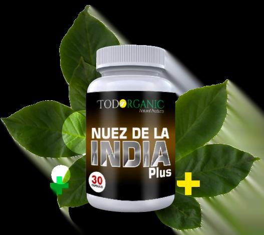 Indian Nut